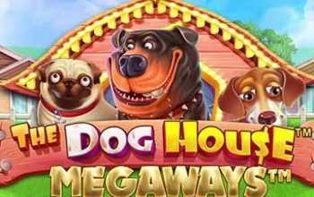 The Dog House Megaways van Pragmatic Play nu online te vinden!